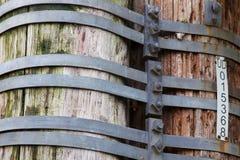 Free Bound Utility Poles Royalty Free Stock Image - 17645276