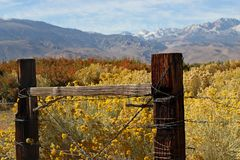 Boundaries of an Eastern Sierra Ranch Stock Photo