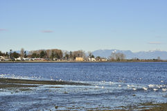 Boundary bay Stock Images