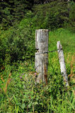 Boundary Fence Royalty Free Stock Images
