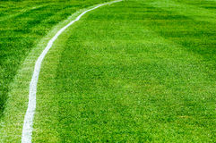 Boundary line on a cricket field Royalty Free Stock Image