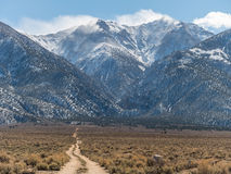 Boundary Peak, tallest in Nevada Stock Photos