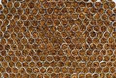 Boundless cigarette wall | Background Stock Photos