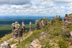 Boundless expanse. view from mountains. natural stone pillars. phenomenon. Chiquitania. Bolivia Stock Image