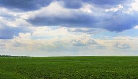 Boundless field Stock Photo
