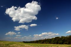 Boundless field. Ukrainian Steppe. Fields going to horizon Royalty Free Stock Photography