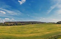 Boundless Russian field, panorama, Kolomna, Russia, summer. Russian Nature - Boundless Russian field, panorama, Kolomna, Moscow region, Russia, summer stock photos