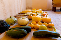 Bountiful autumn harvest of many pumpkin sorts and colours. Royalty Free Stock Photo