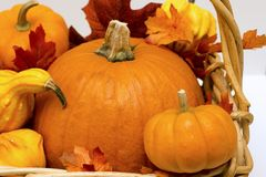 Fall basket overflowing with pumpkins, gourds & fall leaves. Bountiful fall basket overflowing with pumpkins, gourds & fall leaves Stock Photography