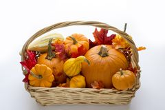 Fall basket overflowing with pumpkins, gourds & fall leaves. Bountiful fall basket overflowing with pumpkins, gourds & fall leaves Stock Image
