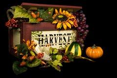 Bountiful Harvest Stock Image