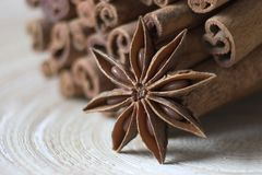 Bounty cinnamon and Star anise on a tray Royalty Free Stock Photo