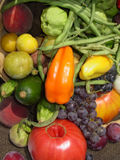 Bounty of Vegetables royalty free stock photography