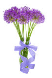 Bouqet of Allium / isolated on white Royalty Free Stock Photo