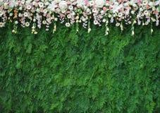 Bouqet de fleurs et bakcdrop de congé Image stock