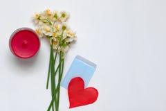 Bouqet dos narcisos amarelos da mola no fundo branco com papel vermelho Fotografia de Stock