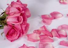 Bouqet e pedais da flor Fotografia de Stock