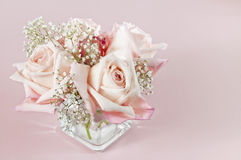 Bouqet of pink baby roses Stock Image