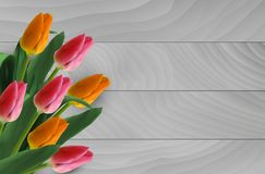 Bouqet of tulips Royalty Free Stock Photos