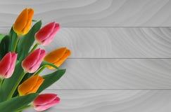 Bouqet van tulpen Royalty-vrije Stock Foto's