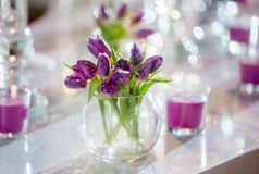 Bouqet of violet tulips Royalty Free Stock Photography