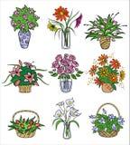 Bouqets de la flor en floreros. Ejemplo del vector Imagen de archivo libre de regalías