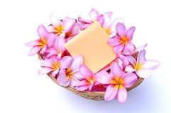 Bouqeut of plumeria flowers Stock Photos