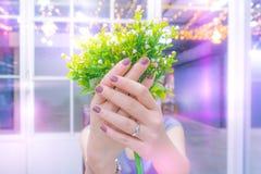 Bouqu fêmea feliz novo da aliança de casamento da prata da mostra e da rosa do branco imagem de stock