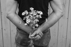 Bouque of Daisies. Man holding a bouquet of daisies Royalty Free Stock Images