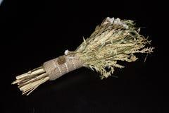 Bouque susi kwiaty Zdjęcia Stock