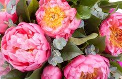 Bouquet étonnant des mésons pi roses Images libres de droits