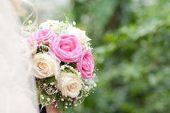 Bouquet. The bride holding a bouquet against greens Stock Photography