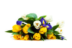 Bouquet. Royalty Free Stock Image