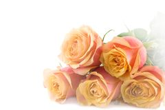 Bouquet. Five beautiful roses isolated over white background stock photo