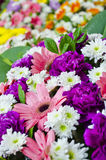 Bouquet. Of colorful flowers and green foliage Stock Photos