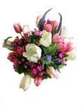 Bouquet. Pink and white spring flower arrangement Royalty Free Stock Image