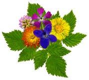 Bouquet1 Royalty-vrije Stock Fotografie