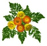 Bouquet3 Stock Foto