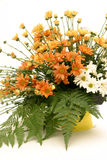 Bouquet. A bunch of orange and white chrisanthemum flowers with fern fillers Stock Image