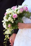 Bouquet. Stock Images