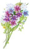 Bouquet. Vector bouquet of spring flowers Stock Photos