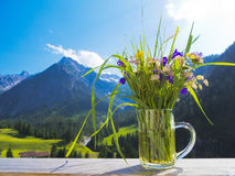 A bouquet of alpine field flowers Royalty Free Stock Photography
