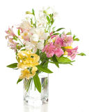 Bouquet of Alstroemeria. Flowers isolated on white background Stock Images