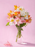 Bouquet of Alstroemeria Stock Photos