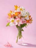 Bouquet of Alstroemeria stock photos