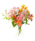 Bouquet of Alstroemeria flowers Stock Photos