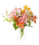 Bouquet of Alstroemeria flowers Stock Photos