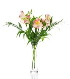 Bouquet of alstroemeria flowers in glass vase stock image