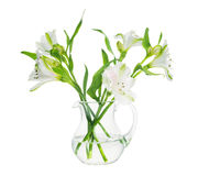 Bouquet of alstroemeria flowers in transparent vase isolated royalty free stock photos