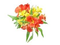 Bouquet of alstroemeria Royalty Free Stock Photo